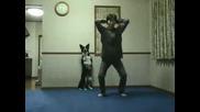 Куче Изверг се учи от t_4_v