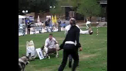 Cac Стара Загора 14.09.2008г. Bis (2)
