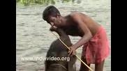 Къпане на слон