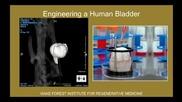 Anthony Atala Printing a human kidney