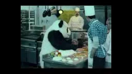 Никога не казвай не на панда