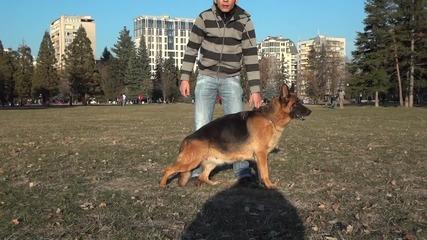 Равзъдник за Нок продава Dixi Vlaisavljevic