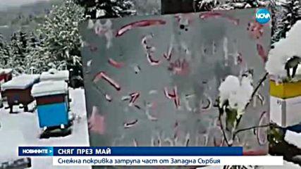 Сняг затрупа Западна Сърбия