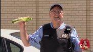 Птицата уцели сандвича на полицая - скрита камера - Смях