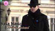 Sasa Matic - Vreme jeseni ( Audio)
