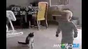 Коте се бори с бебе