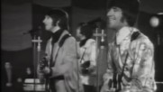 The Tremeloes ( 1967 ) - Here Comes My Baby