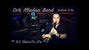 Ork. Mladen Bend - Kuchek 9-ka 2014 Studio Dj Skeleta