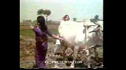 Best Of Shabnam And Nadeem - Pehchaan 1975.flv