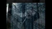 • Превод • Evanescence - Bring Me To Life / анимиран / + Lyrics