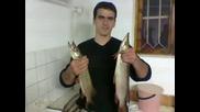 Рибар Съм, Цар И Господар Съм