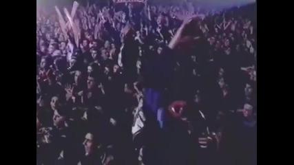 Ceca - Pustite me da ga vidim - (LIVE) - (Pionir 1995)