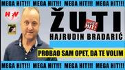 Hajrudin Bradaric - Zuti - Probao sam opet, da te volim ( Audio 2016) Hd