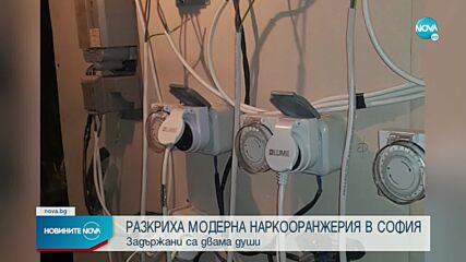 Разбиха модерна лаборатория за марихуана в София