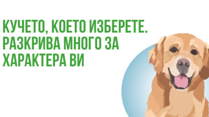 Кучето, което изберете разкрива много за характера ви