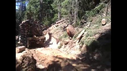 Holztransporter-iveko