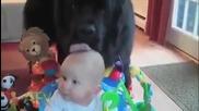 Сладки бебоци, да паднеш от смях !!!