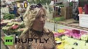 Русия: Холандските лалета със забрана в Русия, смятат се за опасни