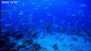Девет Минути Под Вода с Един Дъх