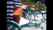 на Яшката рикшите