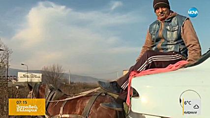 Бременна кобила дърпа тежка каруца, върху която е стоварен автомобил за скрап