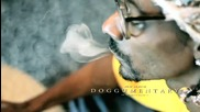 New * Snoop Dogg - Stoner's anthem ( Official video )
