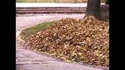 Есен в Ниш