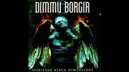 Dimmu Borgir - Arcane Lifeforce Mysteria
