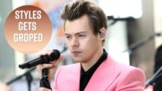 Was Harry Styles sexually assaulted on stage?