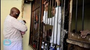 U.S. Pair Accused in Bali Suitcase Murder May Hear Verdicts Tuesday