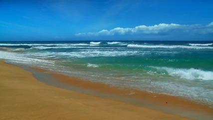 Oahu Beaches - Ocean Sounds [hd]