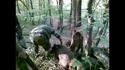 Лов На Прасе