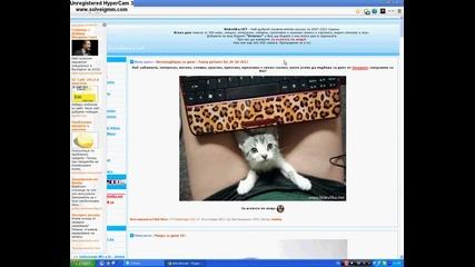 Интересно подреждане на снимките в Biskvitka.net