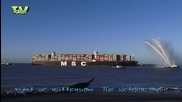 Msc Oscar - the largest container ship in the world