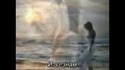 Whitney Houston - Where Do Broken Hearts Go + Бг превод