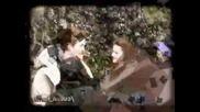 Twilight (здрач) за всички фенове (sup3r pics)