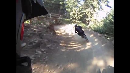 Mountain Bike [hd]