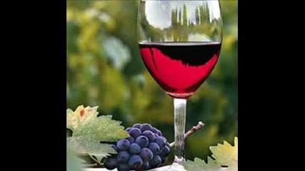 Balkan Beat Pijem Vino