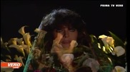 Дивата Роза - Мексикански Сериен филм, Епизод 43