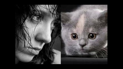 Прилики Между Известни Личности И Животни