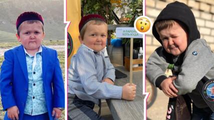 Всички говорят за Хасбула Магомедов! Кой е малкият голям боец, който стана meme за часове?
