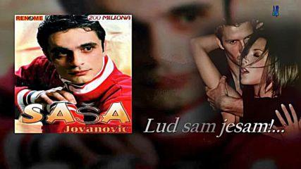 Sasa Jovanovic /// Lud sam jesam