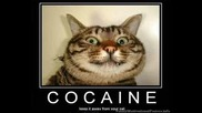 Minimal Cocaine