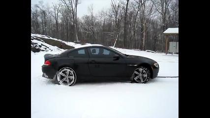 Звяр на сняг