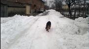 нок в снега