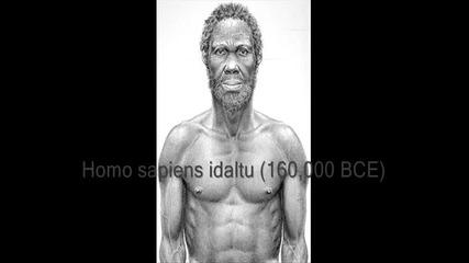 Еволюция на човека!