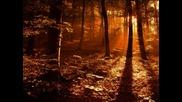 Слънцето трепти, захода - Янка Рупкина