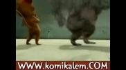 Пръдливи Маймуни