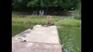 Скок Със Колело В Езерото На Текето Mwb