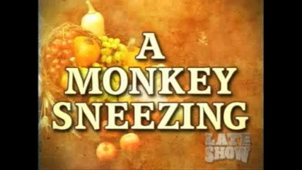 Кихаща Маймуна